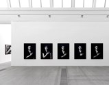 Installation view of exhibition The Book of Kings by Shirin Neshat 7