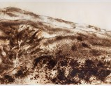 "Photo of the artwork ""Svinkløv Sand Dunes"" by Cai Guo-Qiang of exhibition A Clan of Boats 1"