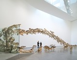 "Photo of artwork ""Head On"" by Cai Guo-Qiang"