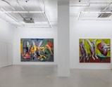 Installation view The Rejected Paintings 5,1