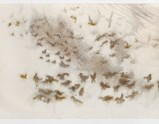 Photo of artwork seagull by Cai Guo-Qiang of exhibition A Clan of Boats 1